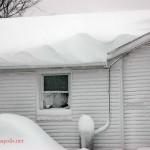 Feb Snow (10)