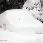 Feb Snow (12)