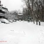 Feb Snow (1)