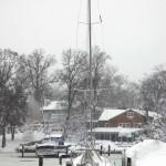 Feb Snow (2)
