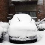 Feb Snow (4)
