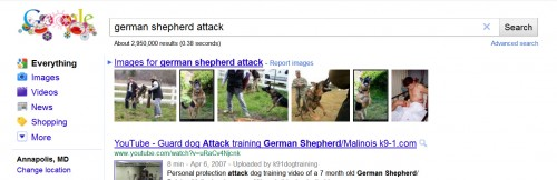German Shepherd Attacks