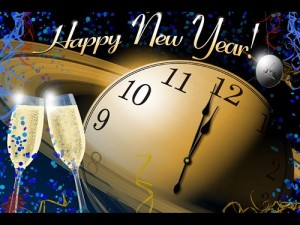 2014 Annapolis New Year's Information