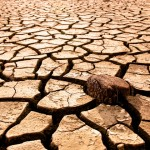 O&#8217;Malley Requests Federal Drought Assistance