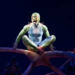 Cirque du Soleil&#8217;s TOTEM