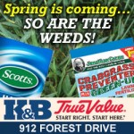 Eye-on-Annapolis-weed-Mar20-31