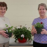 South County Senior Center Plant Sale