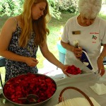 23rd Annual Strawberry Fest On Tap