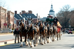 Budweiser Clydesdales to return for Military Bowl on December 28th