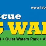 Labrador retrievers to take over Quiet Waters Park