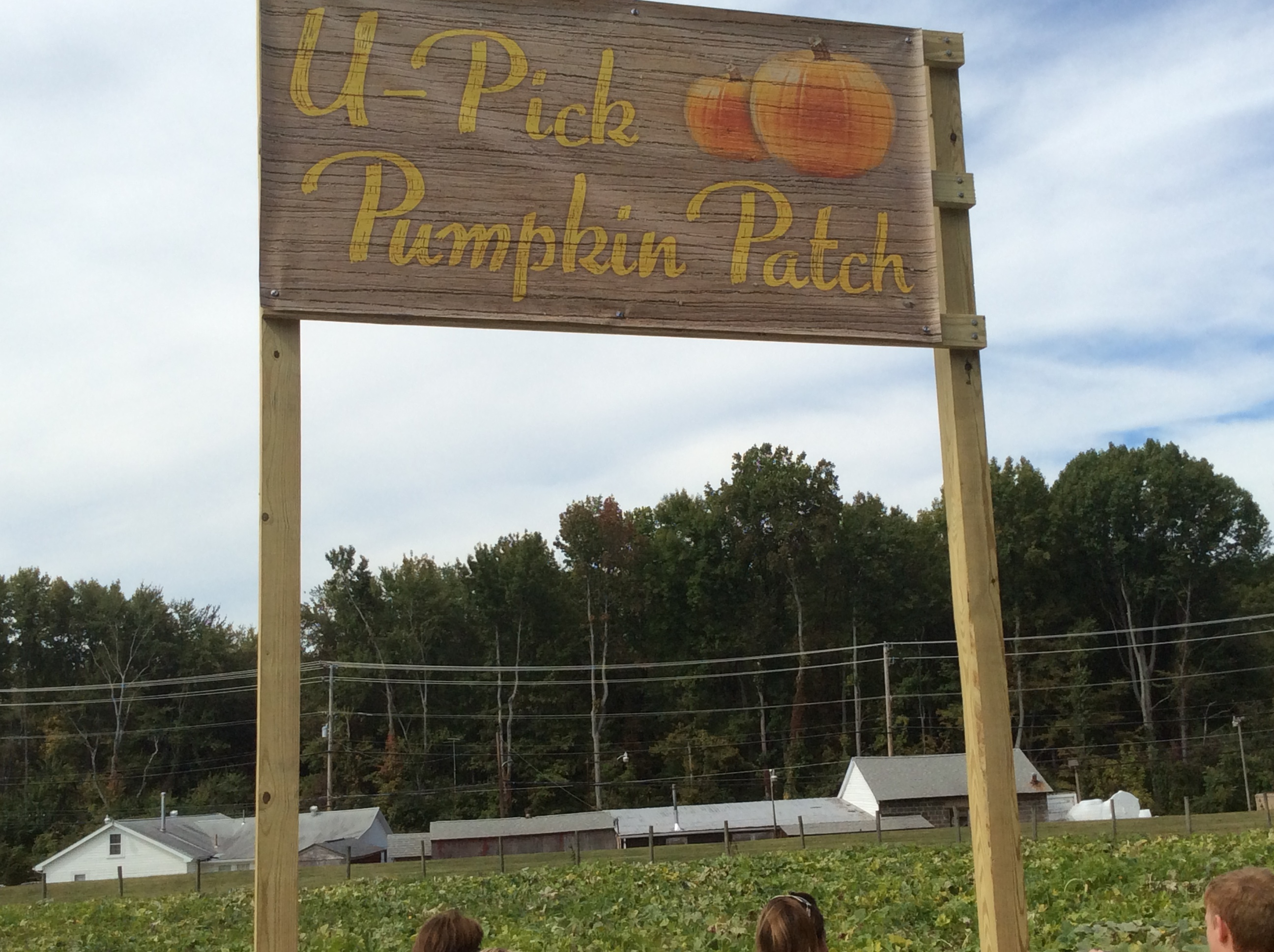 Homestead Fall Fest 44 Eye On Annapolis