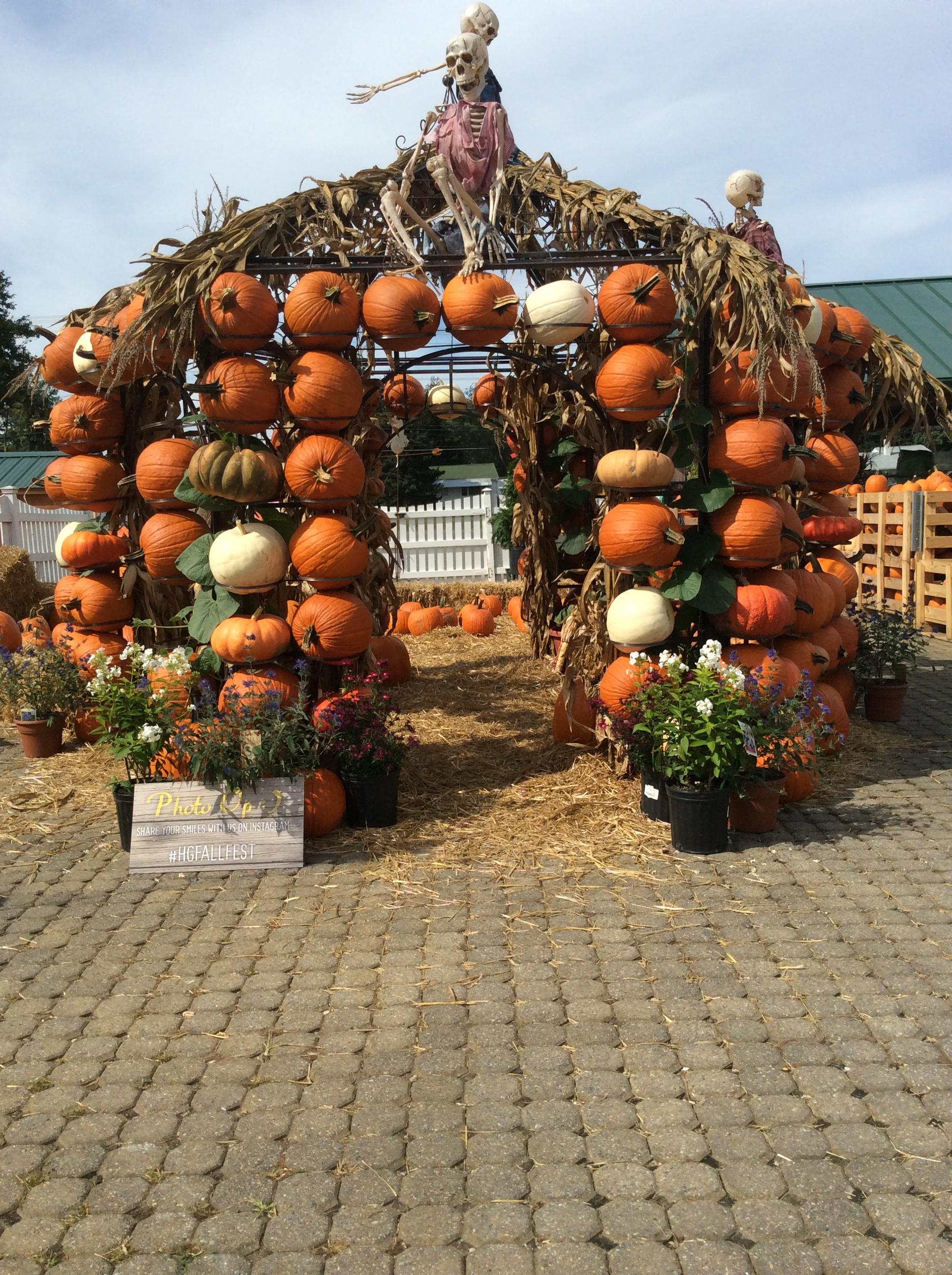 Homestead Fall Fest 61 Eye On Annapolis