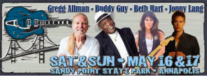 bay blues 2015 lineup