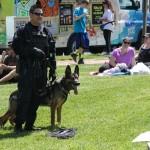 AA Co Police Demo