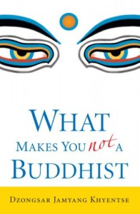 What Makes You Not a Buddhist Book Cover
