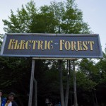 Electric-Forest-2015-015