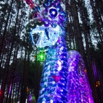 Electric-Forest-2015-025