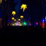 Electric-Forest-2015-047