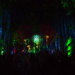 Electric-Forest-2015-049
