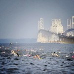 Chesapeake Bay: Safe to Swim?