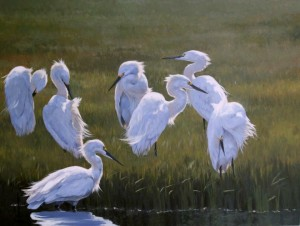 Paula Waterman, Morning Preening(egrets), oil at McBride Gallery