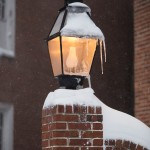 Annapolis Snow January 2016-23
