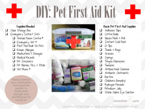 First Aid Kit Annapolis urgent care evolve medical clinics