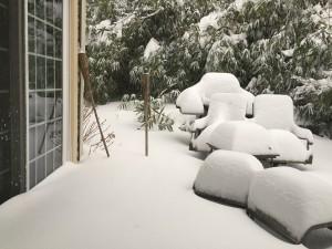 Blizzard January 2016 1
