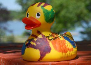 QuacksDS27979