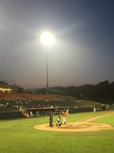 Baysox drop SeaWolves for series win