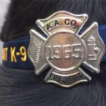 "Fire Department's newest K9 ""Spice"" receives badge from County Executive Schuh"