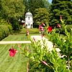 historic-annapolis-paca-garden-with-red-flowers