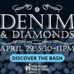 aamc_denimdiamonds_300x250-discover