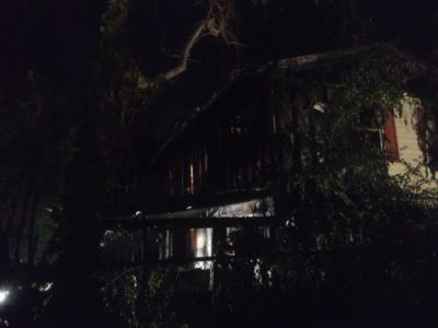 Dog perishes in Pasadena house fire