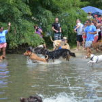 The Puppy Plunge is coming!