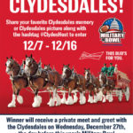 Want to meet the world-famous Budweiser Clydesdales?