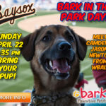 Bark in the Park this Sunday at Baysox