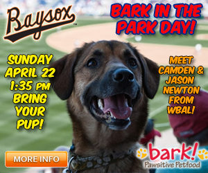 Bowie Baysox homestand preview
