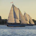Wednesday Night Sailboat Racing Cruise aboard the 74-foot Schooners Woodwind & Woodwind II