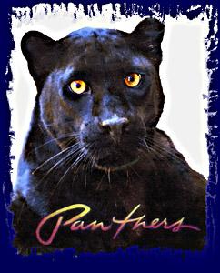 pantherfinal