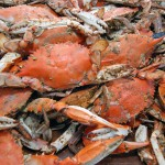 Grants Available From Rotary Crab Feast Proceeds