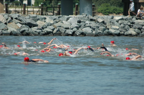 Great Chesapeake Bay Swim This Weekend