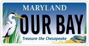 Chesapeake Bay Trust to host 19th Annual Treasure the Chesapeake on May 4th