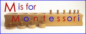 Montessori International Open House Scheduled