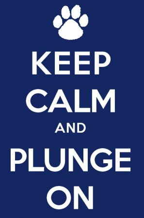 Plunge Is On For March 8th