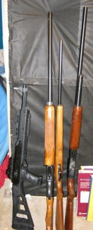 seized guns