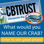 Name the crab for the Chesapeake Bay Trust