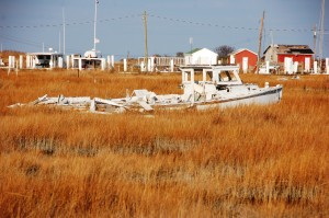 An abandoned Chesapeake Bay deadrise workboat rests in the marshes of Tangier Island, Virginia. The Chesapeake Bay Maritime Museum in St. Michaels, MD is exploring shipwrecked, abandoned and salvaged boats in a new Shipwrecked! Speaker Series, which begins February 5 and continues February 11 and 24, with seating limited and advanced registration needed. Topics include Abandoned and Salvaged: A Traditional End for Traditional Vessels on the Chesapeake; Clear as Mud: an Introduction to Maryland's Underwater Archaeology; and The Monterrey Wrecks: Unraveling the Mystery of a Baltimore Privateer Discovered in the Gulf of Mexico. To register or for more information, email aspeight@cbmm.org or call 410-745-4941.