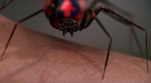 2002-Rami-Maguire-Spider-man-movie-genetically-designed-super-spider-biting-Peter