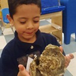 Pre-K kids learn about Bay health at Annapolis Maritime Museum